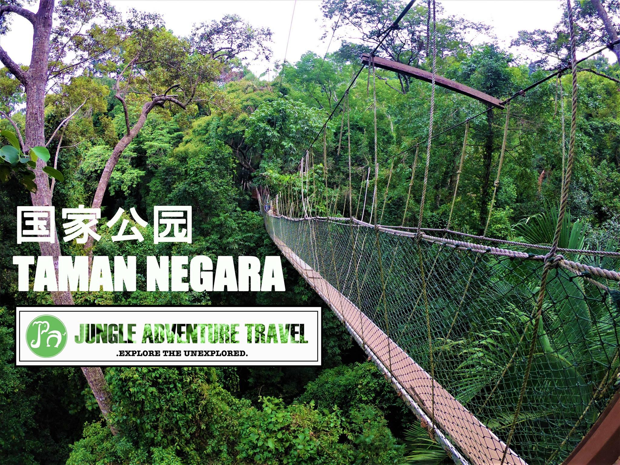 Jungle Adventure Travel